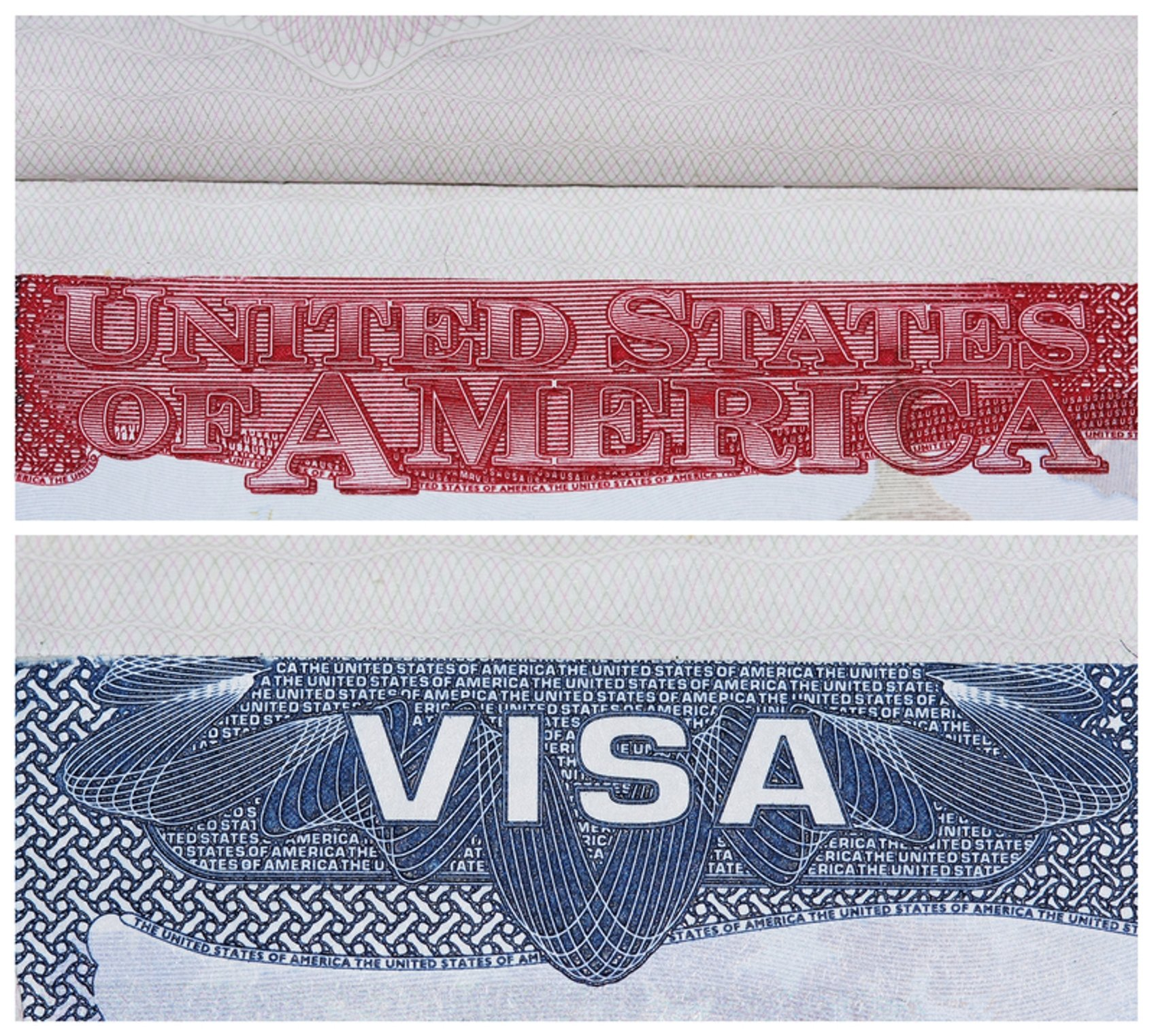 us department of state visa application